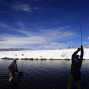 Bucking Rainbow Outfitters | Steamboat Springs, CO | fly fishing photo Gallery